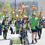 Shaun Walker/The Times-Standard  Gladys the Green Giraffe team members circle the plaza at the Kinetic Grand Championship in Arcata on Saturday.